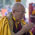 Losar Tashi Delek from Ayang Rinpoche