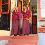 Guru Dragpo Drubchoe, Bylakuppe Monastery, February 16-22